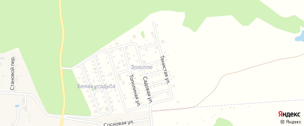 Вишневый переулок на карте дачного некоммерческого партнерства Золотого с номерами домов