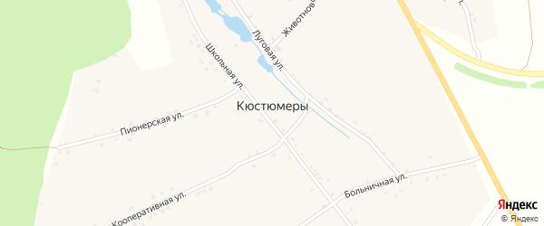 Пионерская улица на карте деревни Кюстюмеры с номерами домов