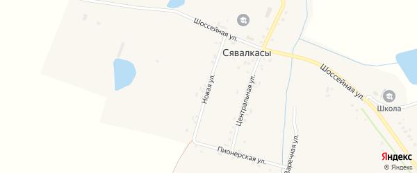 Новая улица на карте деревни Сявалкас с номерами домов