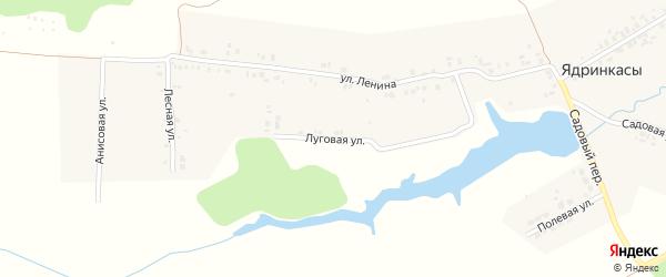 Луговая улица на карте деревни Ядринкасы с номерами домов