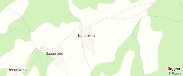 Карта деревни Кальтино в Архангельской области с улицами и номерами домов