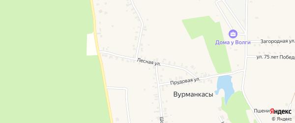 Лесная улица на карте деревни Вурманкасы (Вурман-Сюктерского с/п) с номерами домов