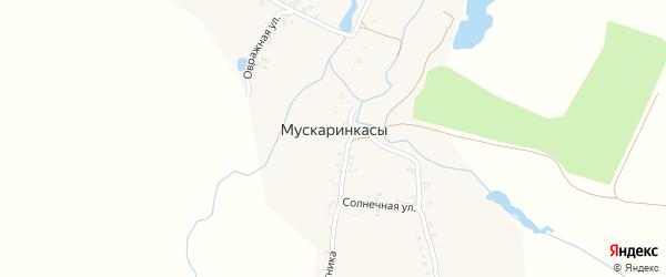 Улица Спутника на карте деревни Мускаринкасы с номерами домов