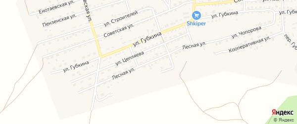 Лесная улица на карте села Енотаевки с номерами домов
