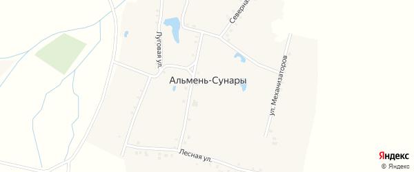 Луговая улица на карте деревни Альменя-Сунары с номерами домов
