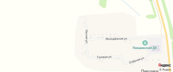 Лесная улица на карте деревни Пикшики с номерами домов