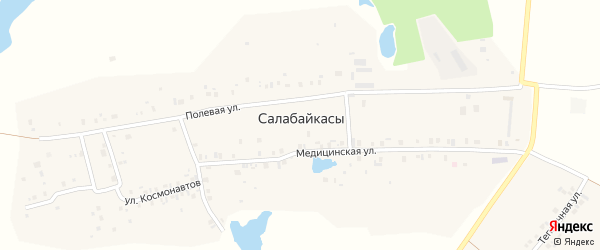 Улица Л.Н.Толстого на карте деревни Салабайкас с номерами домов