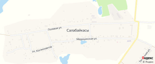 Полевая улица на карте деревни Салабайкас с номерами домов