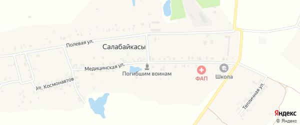 Медицинская улица на карте деревни Салабайкас с номерами домов