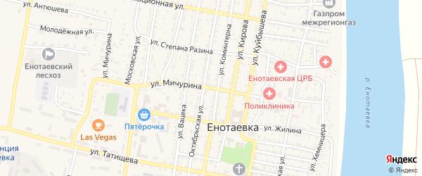 Улица Мичурина на карте села Енотаевки с номерами домов