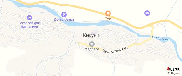 Центральная улица на карте села Кикуни с номерами домов