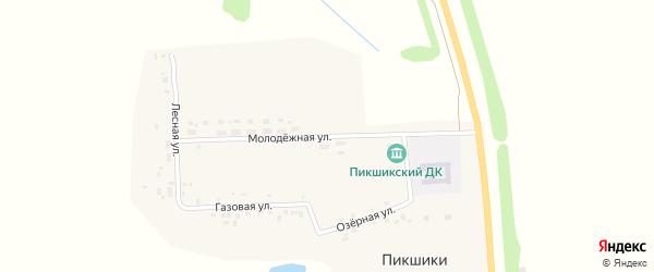 Восточная улица на карте деревни Пикшики с номерами домов