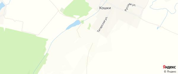 Карта деревни Кошки в Чувашии с улицами и номерами домов
