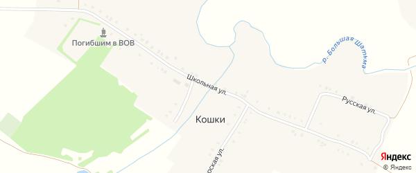 Школьная улица на карте деревни Кошки с номерами домов