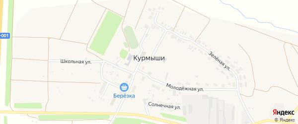 Солнечная улица на карте деревни Курмыши с номерами домов