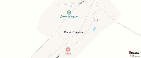 Молодежный переулок на карте деревни Хоры-Сирмы с номерами домов