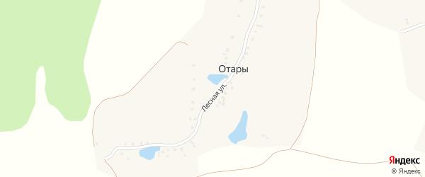 Лесная улица на карте деревни Отары с номерами домов