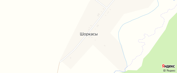 Молодежный переулок на карте деревни Шоркас с номерами домов