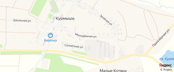 Молодежная улица на карте деревни Курмыши с номерами домов