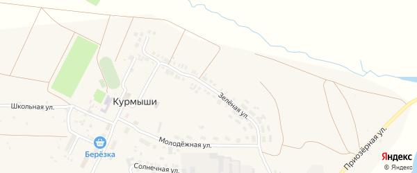 Зеленая улица на карте деревни Курмыши с номерами домов