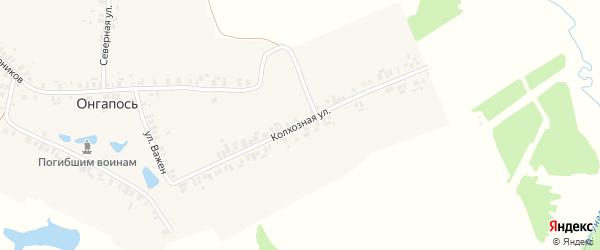 Колхозная улица на карте деревни Онгапоси с номерами домов