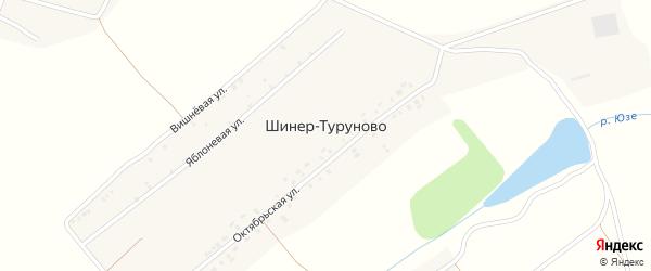 Яблоневая улица на карте деревни Шинер-Туруново с номерами домов