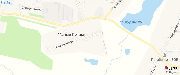 Овражная улица на карте деревни Малые Котяки с номерами домов