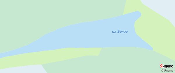 Дачная улица на карте поселка Белого Озера с номерами домов