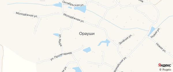 Зеленая улица на карте села Ораушей с номерами домов