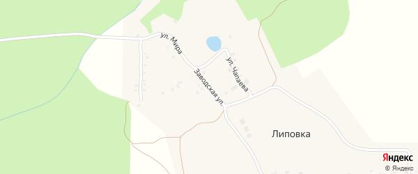 Заводская улица на карте поселка Липовки с номерами домов