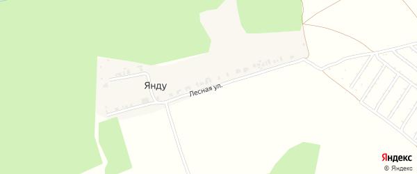Лесная улица на карте деревни Янду с номерами домов