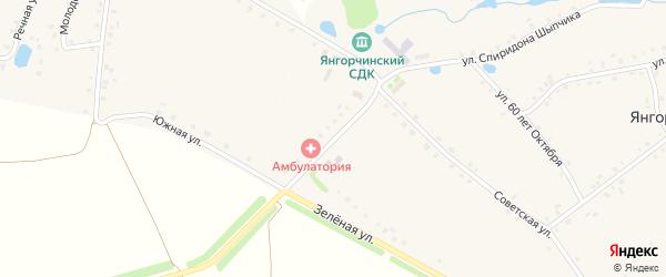 Молодежная улица на карте села Янгорчино с номерами домов