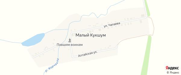 Алтайская улица на карте деревни Малого Кукшума с номерами домов
