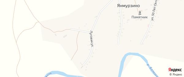 Луговая улица на карте деревни Янмурзино с номерами домов
