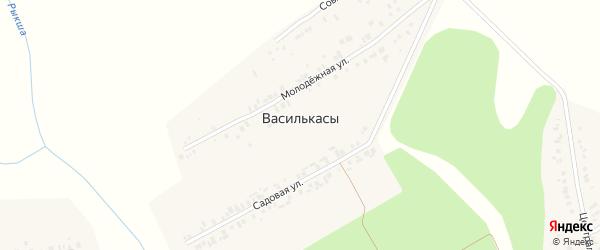 Совхозная улица на карте деревни Василькас с номерами домов