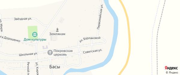 Улица Бурлаковой на карте села Басы с номерами домов