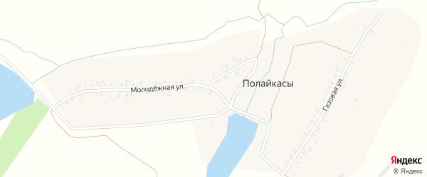 Молодежная улица на карте деревни Полайкас с номерами домов