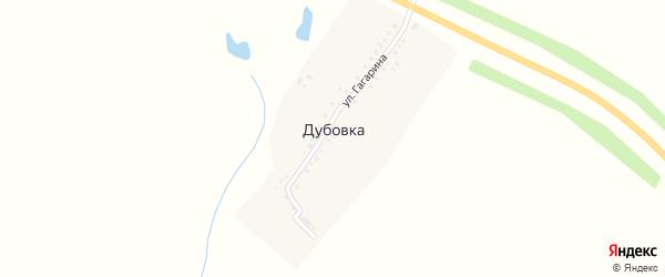 Улица Гагарина на карте деревни Дубовки с номерами домов
