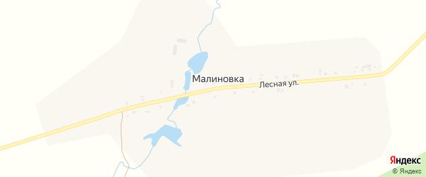 Лесная улица на карте поселка Малиновки с номерами домов