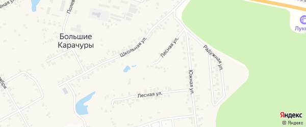Лесная улица на карте деревни Большие Карачуры с номерами домов