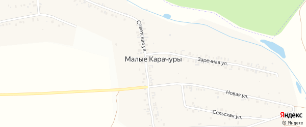 Советская улица на карте деревни Малые Карачуры с номерами домов