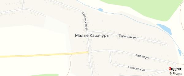 Заречная улица на карте деревни Малые Карачуры с номерами домов