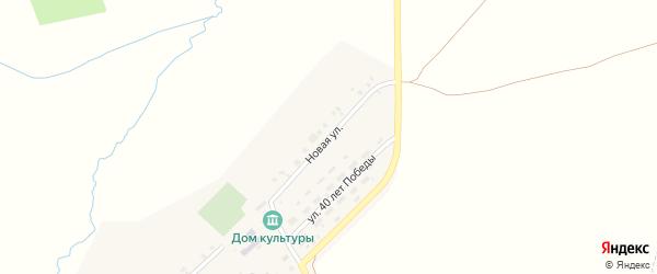 Новая улица на карте деревни Чадукасы с номерами домов