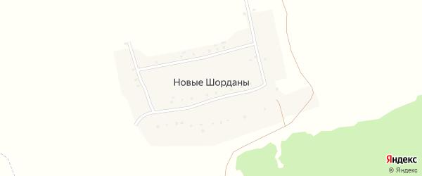 Сосновая улица на карте деревни Новые Шорданы с номерами домов