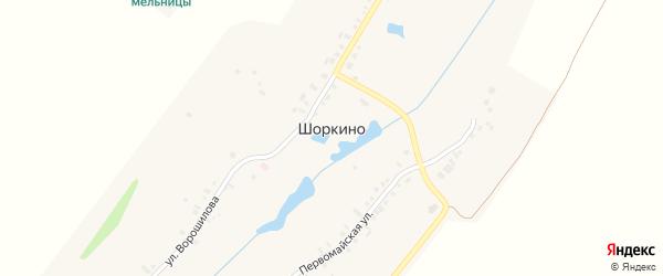 Пристанционная улица на карте деревни Шоркино с номерами домов