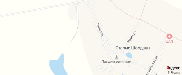 Центральная улица на карте деревни Старые Шорданы с номерами домов