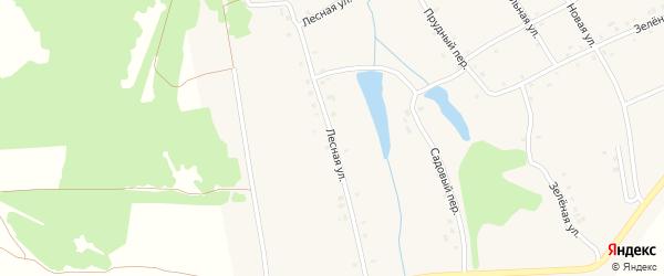 Лесная улица на карте деревни Новые Ачакасы с номерами домов