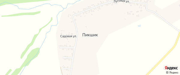 Садовая улица на карте деревни Пикшика с номерами домов