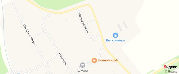 Молодежная улица на карте деревни Новые Ачакасы с номерами домов