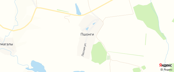 Карта деревни Пшонги в Чувашии с улицами и номерами домов